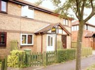 1 bed home to rent in Stafford Grove...