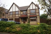 property to rent in Selworthy, Milton Keynes...