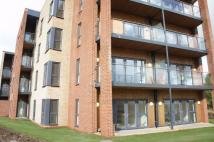 2 bed Flat to rent in Bessemer Lodge...