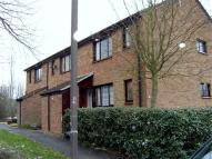 Downland house to rent