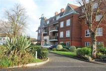 Roebuck Heights Apartment to rent