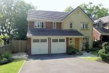 5 bedroom Detached house in CLRENDON GARDENS...