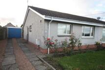 3 bedroom Semi-Detached Bungalow to rent in 17 Forthview Gardens...
