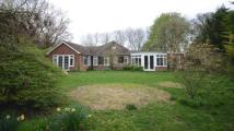 4 bedroom Bungalow in Woods Lane, Cliddesden...