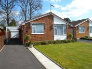 Bungalow for sale in Queens Close, West Moors...