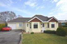 4 bed Detached Bungalow in Oakhurst Road...
