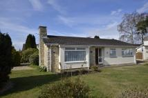 Detached Bungalow for sale in Glenwood Way, West Moors...