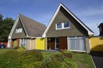 3 bed Link Detached House for sale in Uplands Road, West Moors...