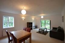 Flat to rent in Maybury Mews, Highgate