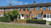 Terraced property to rent in Cherry Way, Hatfield...