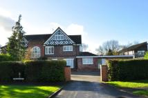 Curzon Park North semi detached house to rent