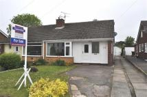 4 bed Semi-Detached Bungalow for sale in Gresford Park, Pant Lane...