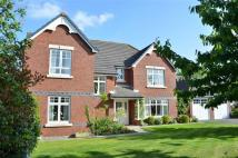 4 bedroom Detached home in Beech Hollows, Rossett...