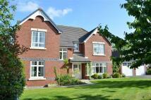 4 bedroom Detached home in Beech Hollows, Rossett...