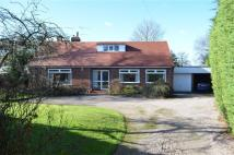 Detached Bungalow for sale in Upton Lane, Upton...