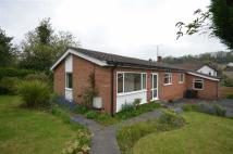 Detached Bungalow for sale in Edale Drive, Kelsall...