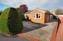 3 bedroom Detached Bungalow in Maes Gwalia, Sychdyn...