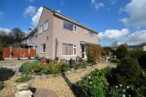 3 bed semi detached house in Llys Alun, Rhydymwyn...