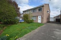 3 bedroom semi detached property for sale in The Firs, Mold, CH7