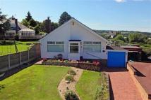 Gwynedd Drive Detached Bungalow for sale