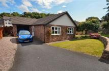 Detached Bungalow in Derby Road, Caergwrle...