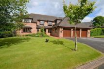 5 bed Detached property for sale in Northop Country Park...