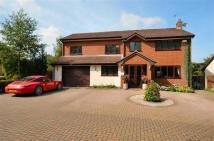 Detached home for sale in Swn Y Nant, Mold, CH7