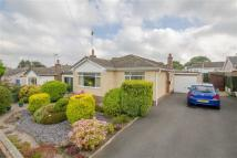 3 bedroom Detached Bungalow in High Park, Gwernaffield...