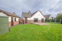 Detached Bungalow in Calcoed, Calcoed...