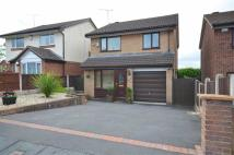 3 bedroom Detached house in Park Avenue, Bryn-y-baal...