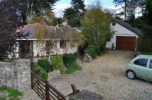 Walwen Detached Bungalow for sale