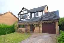 4 bed Detached house in Birch Ridge, Flint, CH6