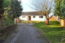 3 bedroom Detached Bungalow for sale in Ffordd Walwen, Lixwm, CH8