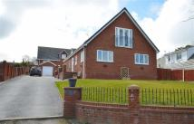 Detached house for sale in Trelogan, CH8