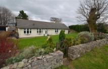 Detached Bungalow for sale in Buxton Lane...