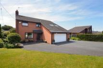 5 bed Detached property in Mold Road, Mynydd Isa...