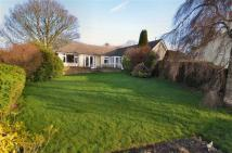 Detached Bungalow in Berthen Road, Lixwm, CH8