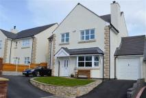 Link Detached House in Maes Y Goron, Lixwm, CH8