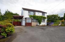 3 bed Detached home in Carmel Hill, Carmel, CH8