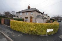 3 bed semi detached house for sale in Parc Alun, Mold, CH7