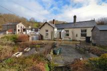 2 bed Detached Bungalow for sale in Denbigh Road, Nannerch...
