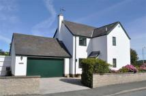 Detached house for sale in Pantymwyn Road, Cilcain...