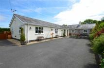 Detached Bungalow in Crossways Road, Caerwys...