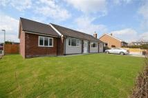 Detached Bungalow for sale in Broadway, Ewloe, CH5