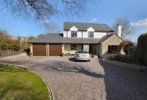 Detached property in Parc Is Y Mynydd...