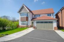 Detached house in Fox Field, Northop, CH7