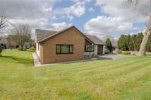 Detached Bungalow for sale in Village Road, Lixwm, CH8