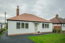 2 bedroom Detached Bungalow for sale in Maes Dolwen, LL15