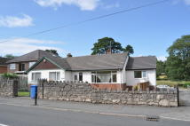 Detached Bungalow to rent in Wayside, Llanfair Road...