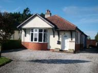 3 bedroom Detached Bungalow in Babell Road, Pantasaph...